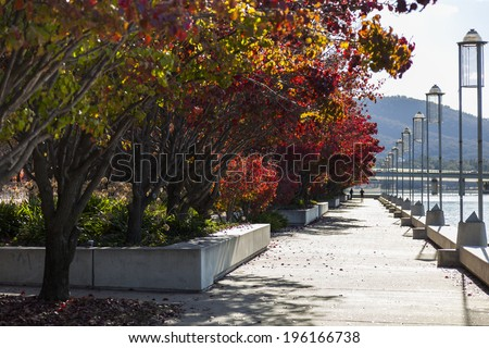 Autumn colours. Embankment of Burley Griffin Lake near National Gallery. Canberra. Australia - stock photo