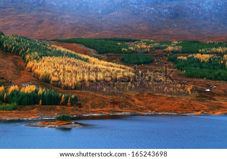 Autumn colours in the Highlands of Scotland, UK, Europe - stock photo