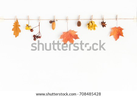 Autumn composition. Autumn flowers and leaves, acorn, pine cone, anise star. Flat lay, top view, copy space