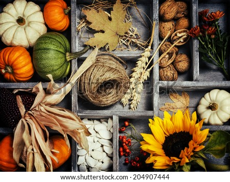 Autumn composition  in wooden box - stock photo