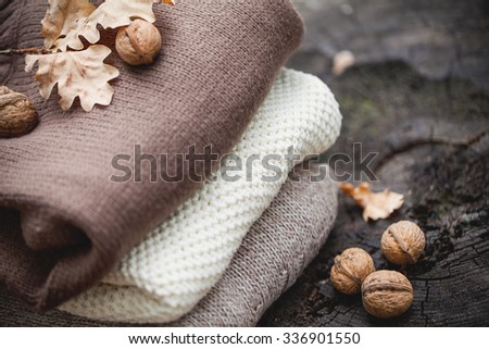 Autumn composition on an old dry tree stump in the autumn forest - stock photo