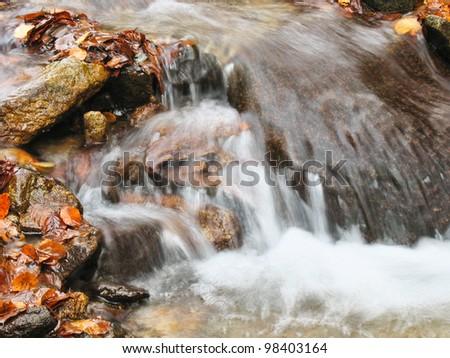 autumn creek - stock photo