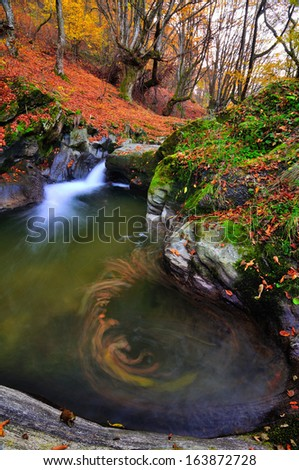 Autumn creek with yellow maple trees and foliage on rocks in forest with tree branches - stock photo