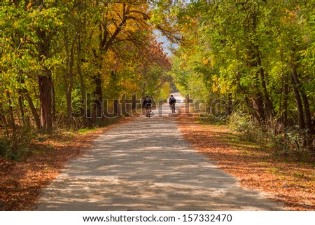 Autumn cycling