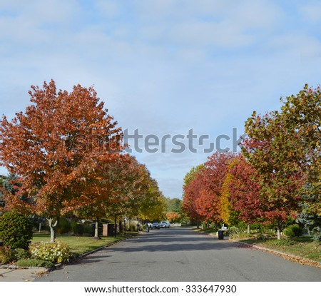 Autumn Day Suburban Neighborhood Street USA - stock photo