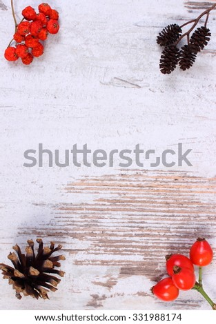 Autumn decoration and copy space for text on old rustic wooden background, red rowan, wild rose, alder and pine cones