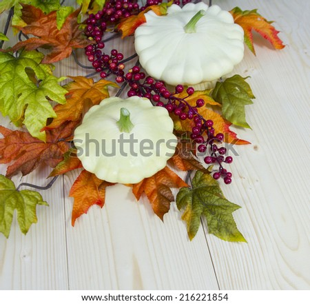 Autumn decoration: group of various kind of ripe cymblings - stock photo