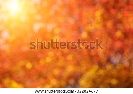 Autumn deep blurred sunny background.
