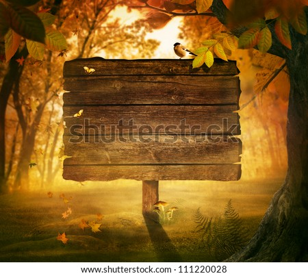 Autumn design - Forest sign. Wooden sign in autumn valley with woods,  tree, falling colorful leaves, mushrooms and bird. Space for your autumnal text. Fall background concept with copyspace. - stock photo