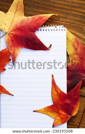 autumn details - stock photo