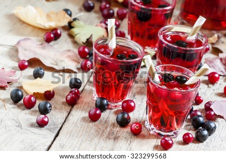 Autumn drink with cranberry and aronia, selective focus - stock photo