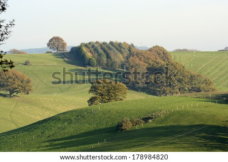 Autumn (Fall) colors in the trees. Surrey Hills. England - stock photo