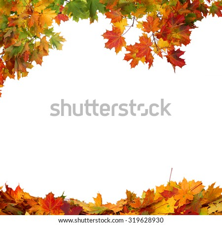 Autumn falling leaves isolated on white background - stock photo