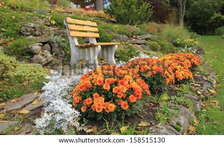 Autumn flowers in a rock-garden Ontario, Canada  - stock photo