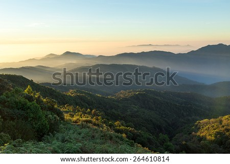 autumn foggy landscape in parang mountains. Chiangmai Thailand - stock photo