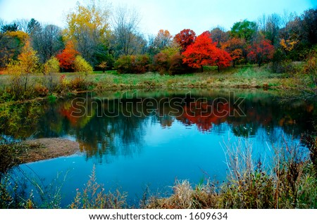 Autumn foliage along lake, pond or river. - stock photo