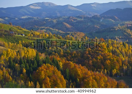 Autumn foliage and mountain forest