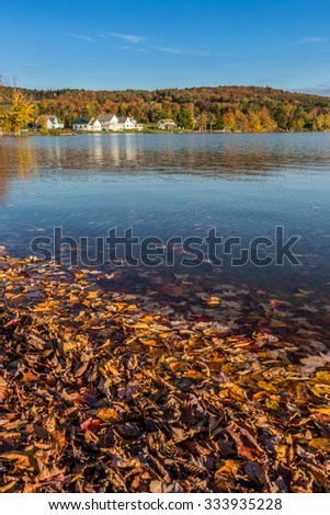 Autumn foliage in Elmore state park in Vermont. - stock photo