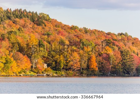 Autumn foliage in Elmore state park, Vermont. - stock photo