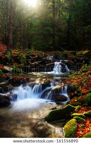 Autumn forest creek on sunrise - stock photo