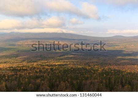 Autumn forest in the distance - stock photo