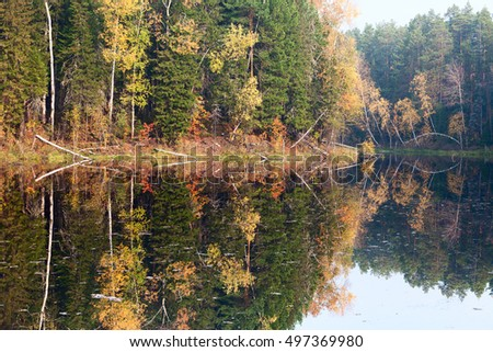 autumn forest lake