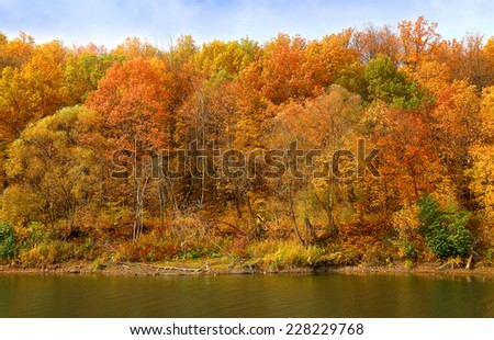 autumn forest on the bank of the river and its reflection in the water
