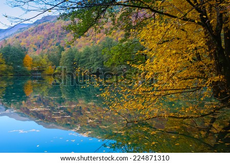 Autumn forest reflecting at lake smooth surface - stock photo