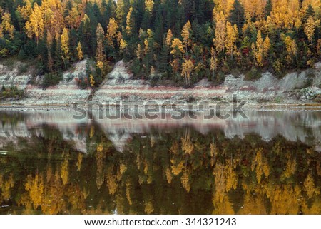 Autumn forest reflection in the river