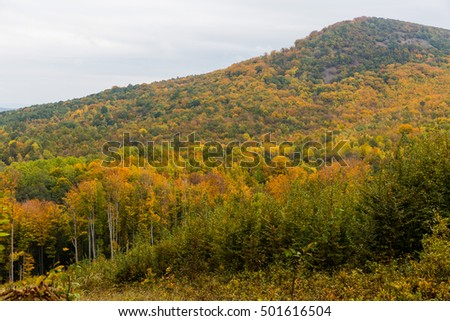 Autumn forest view of Matra mountains Hungary