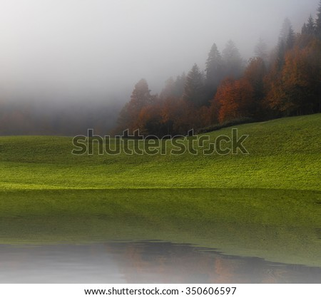Autumn forest, with a fog and a reflection.