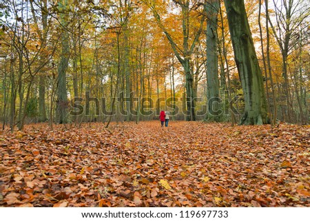 Autumn forest with hiking couple.