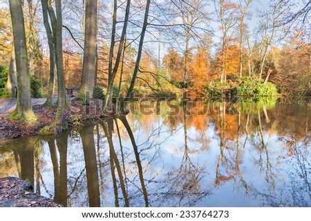 Autumn forest with mirror image in pond