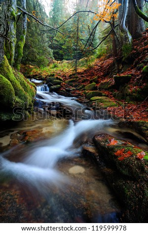 Autumn forest with the fast river - stock photo