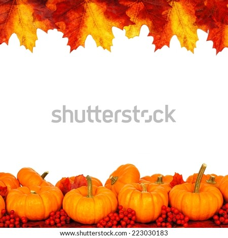 Autumn frame of pumpkins and vibrant leaves isolated on white