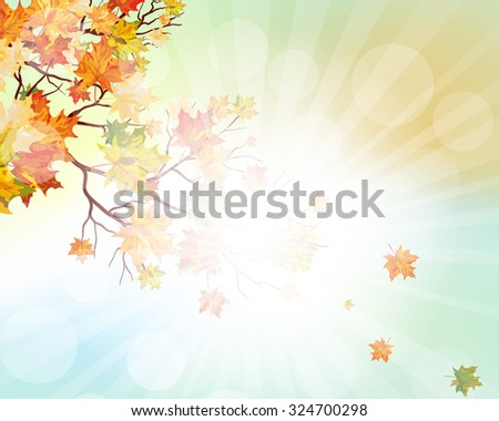 Autumn  Frame With Falling  Maple Leaves on Sky Background. Elegant Design with Rays of Sun and Ideal Balanced Colors.