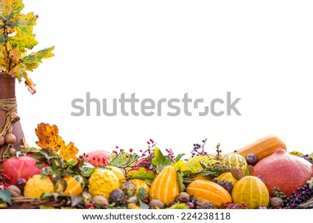 Autumn fruits and vegetables arrangement isolated on a white backgrounds. Conceptual - stock photo