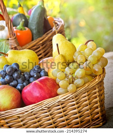 Autumn fruits and vegetables - organic fruits and vegetables - stock photo