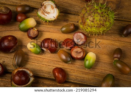 Autumn fruits of chestnut and acorn on wooden retro table in fall colours - stock photo