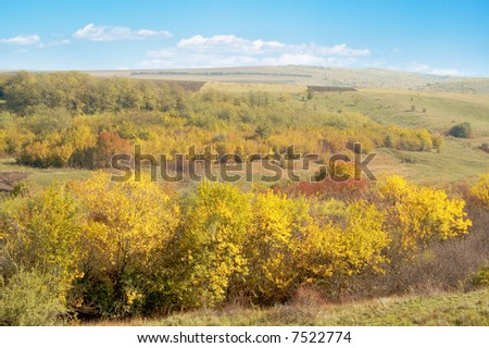 Autumn garden on background blue sky