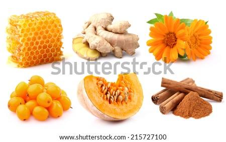 Autumn harvest - stock photo