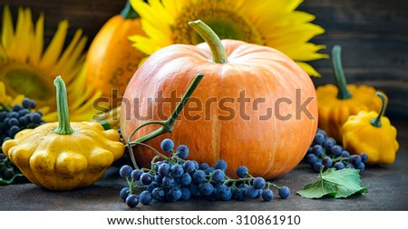 Autumn harvest concept, pumpkin squashes and grapes on a dark background - stock photo