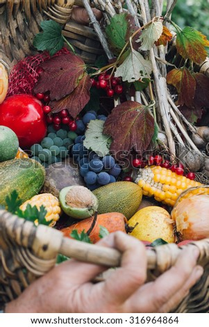autumn harvest fruits and vegetables in the wickerwork basket on the hands of women