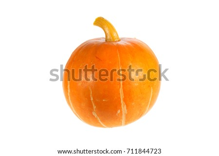 autumn harvest pumpkin