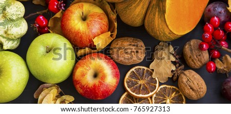 Autumn harvest with apples, pumpkins, squash, nuts,plums and chestnuts , top view