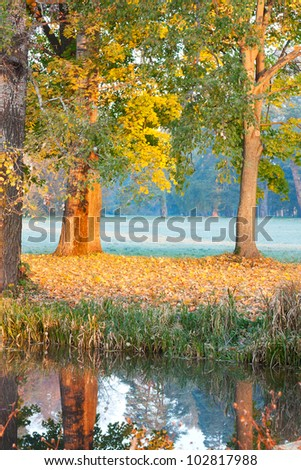 Autumn has come. Morning on the Lake - stock photo