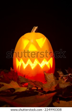 Autumn helloween pumpkin - stock photo