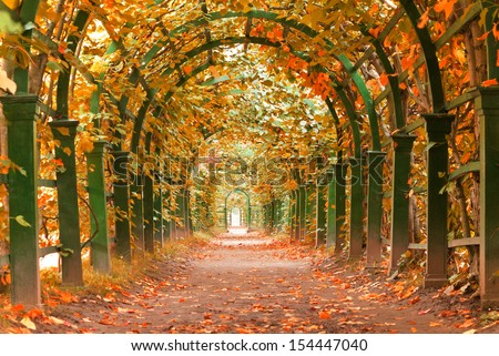autumn in a garden tunnel at Peterhof palace, St Petersburg, Russia - stock photo