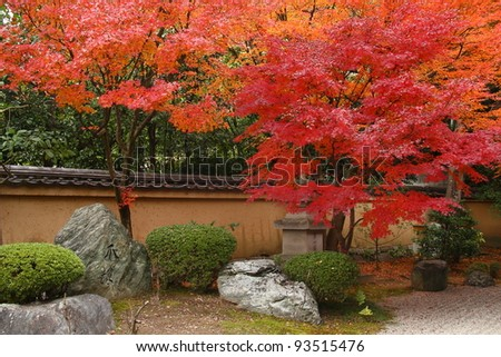 Autumn in a japanese garden (Daitoku-ji, Kyoto) - stock photo