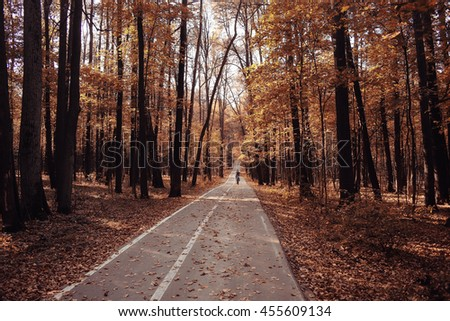 Autumn in America landscape of Central Park - stock photo